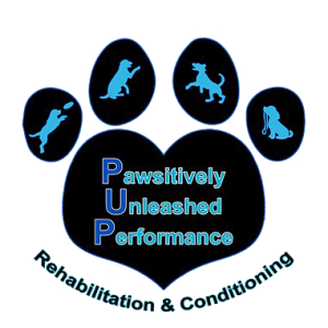 Pawsitively Unleashed Performance Logo